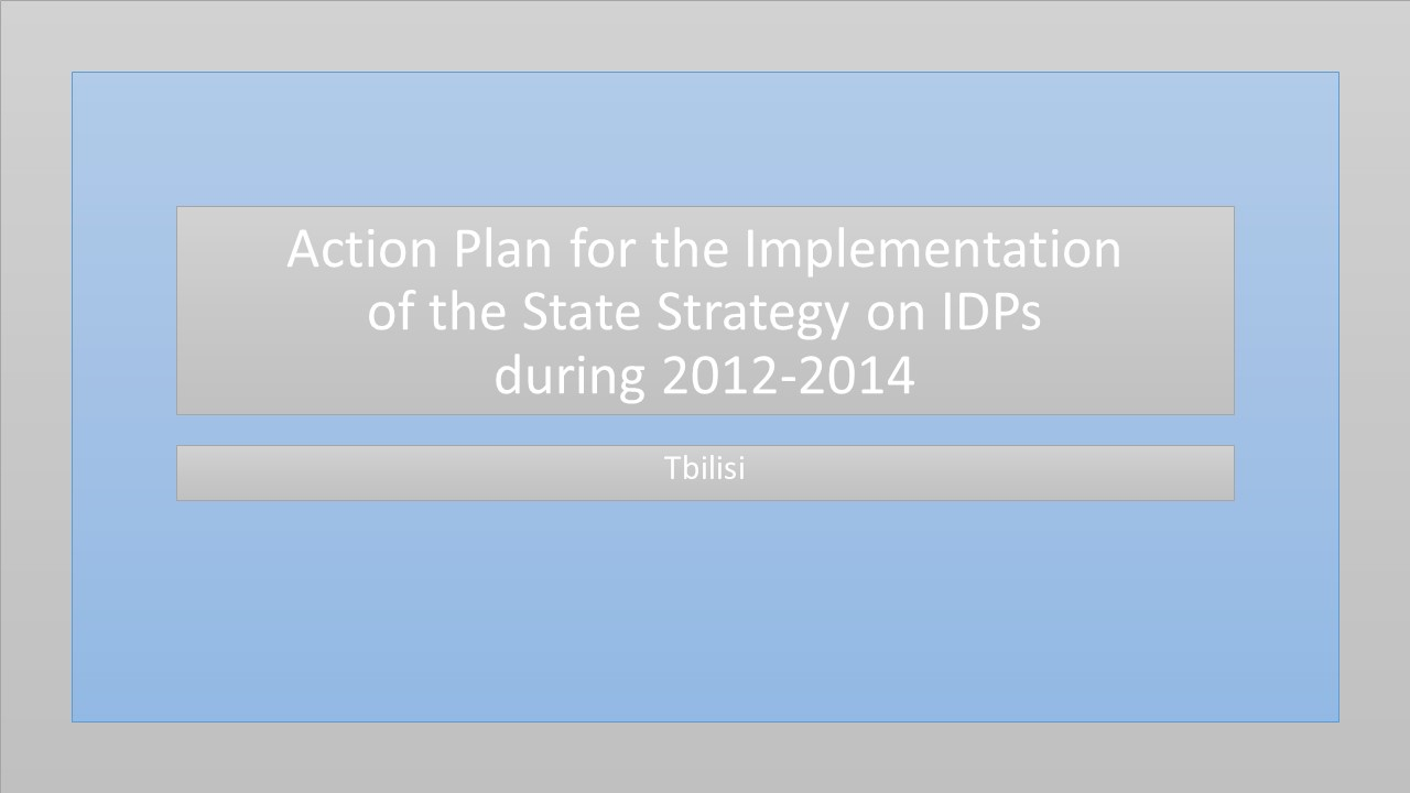 Action Plan for the Implementation of the State Strategy